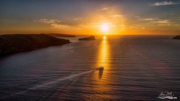 Morning Ferry at Sunrise Patonga